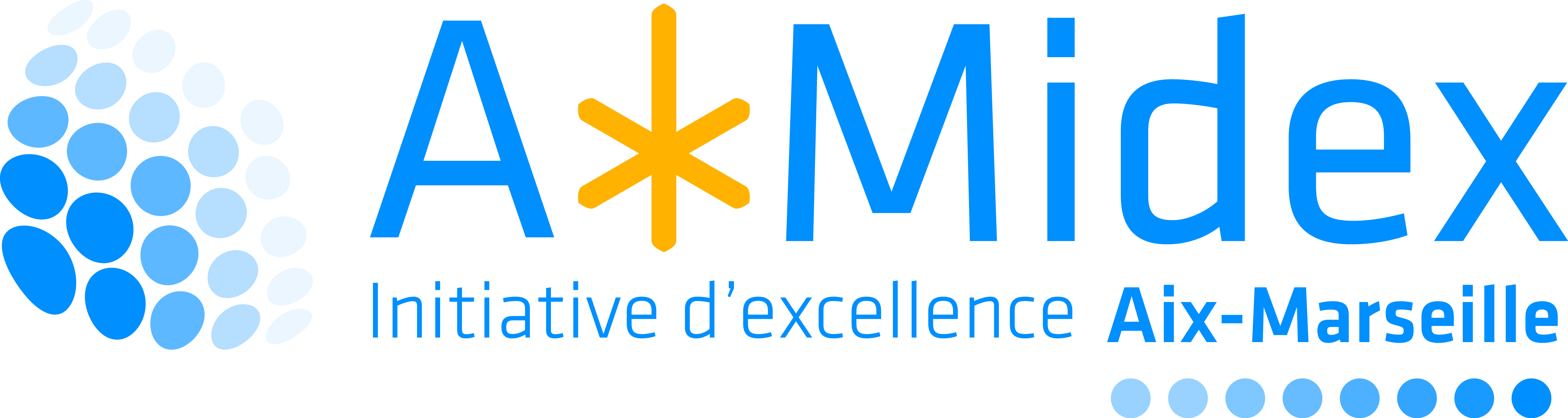 Aix-Marseille Initiative D'Excellence