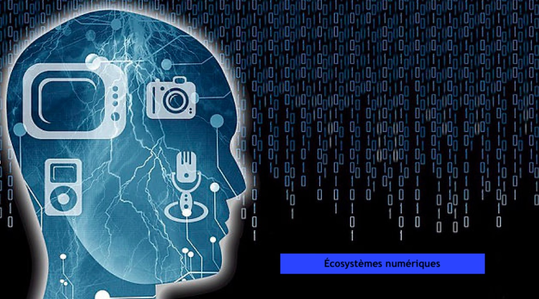 éco numériques
